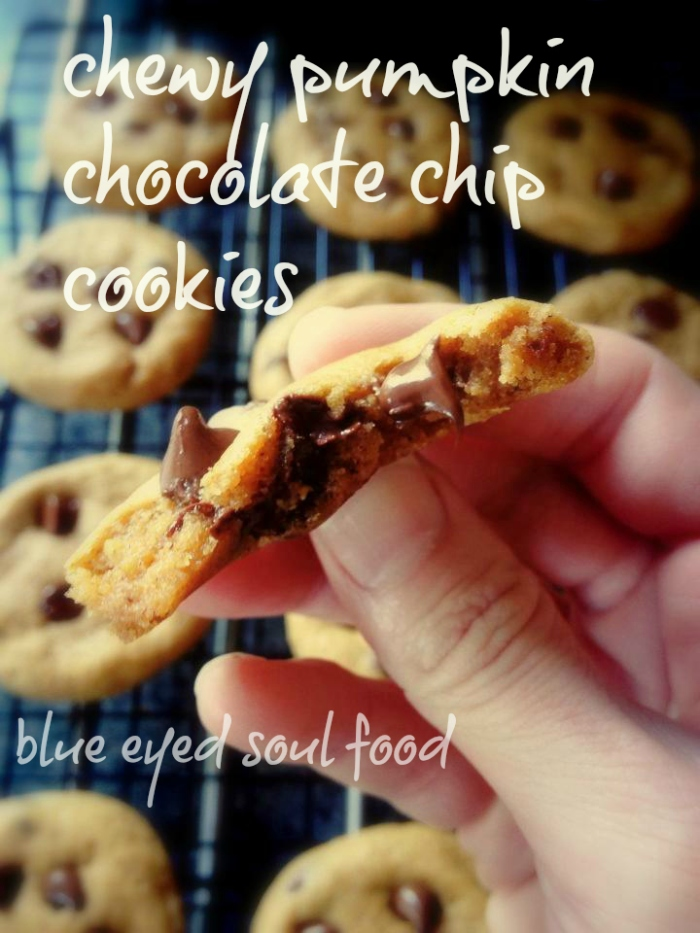 Moist, chewy & a delicious blend of pumpkin pie spices and chocolate! Yum...
